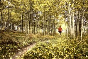 Trail Running. Hunter Creek.